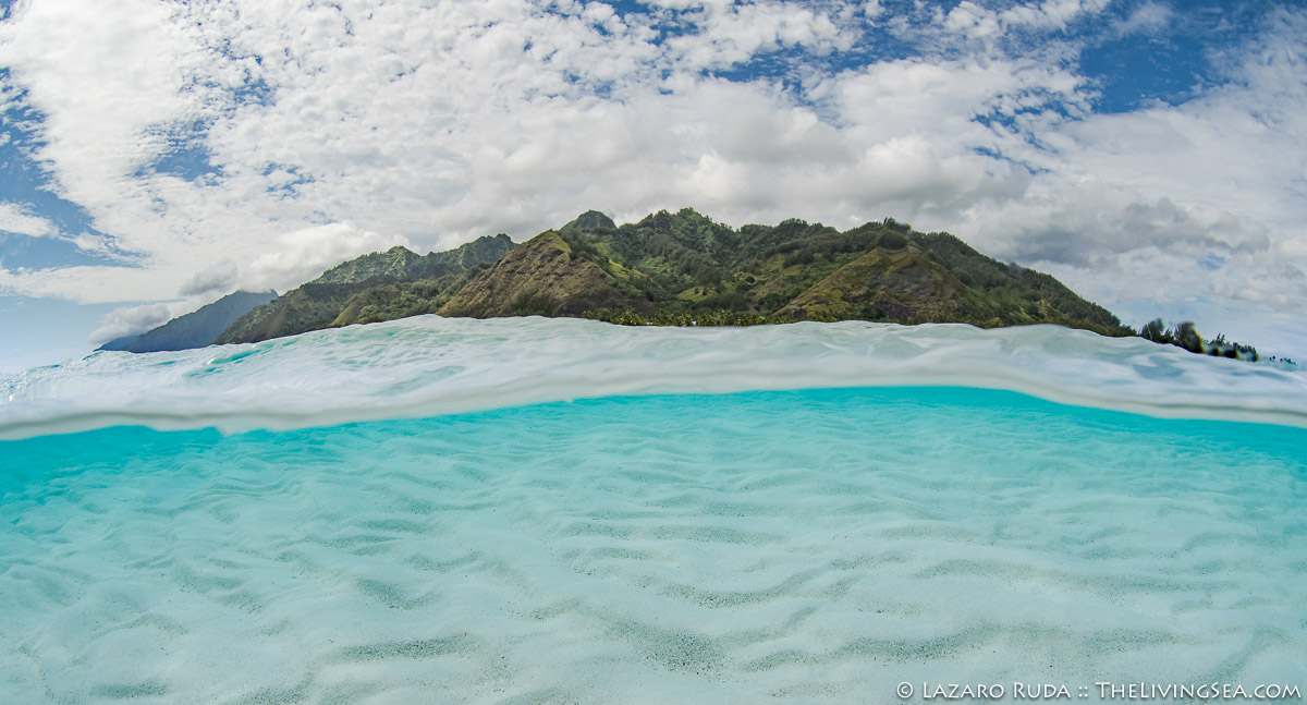 French Polynesia, Laz Ruda, Lazaro Ruda Wildlife Photographer, MORE KEYWORDS, Mo'orea, Moorea, Pacific Ocean, Polynesia, South Pacific, TheLivingSea.com, beach, clouds, horizontal, island, over-under: under/over: under-over: split: split perspective: ha, panoramic, sand, scenic, underwater photo, wide angle