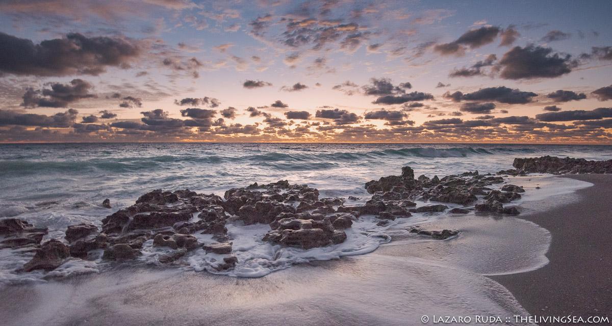 Atlantic Ocean, FL, Florida, Jupiter, Laz Ruda, Lazaro Ruda Wildlife Photographer, TheLivingSea.com, USA, West Palm Beach, [LOCATION], beach, horizontal, sunrise, waves, wide angle