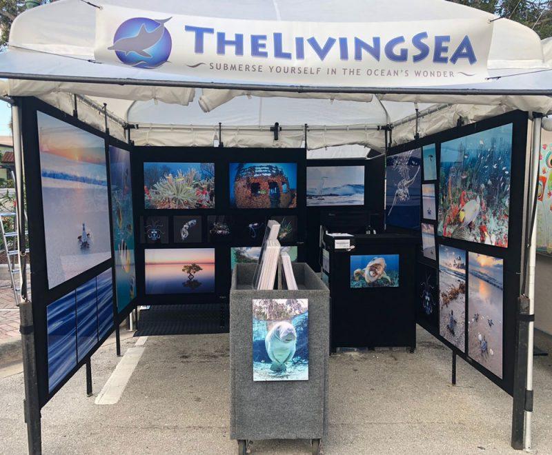 Florida Art Show Booth